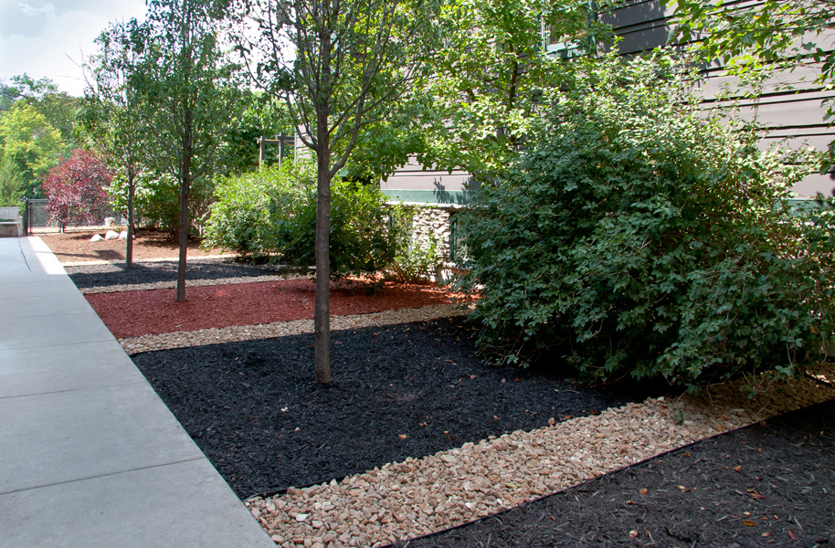 Residential Parkway Landscaping Ideas : Parkways chicago landscaping on the ledge