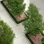 Chicago Landscape Design