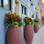 Chatham in Chicago, Planters