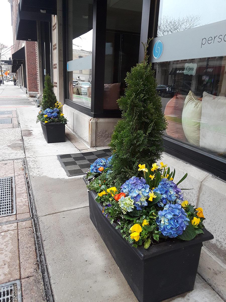 Planters in Evanston, IL
