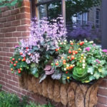 Old Irving Windowbox in Autumn