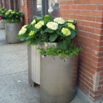 River North Chicago Spring Planters