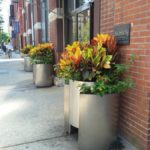 River North Chicago summer planters