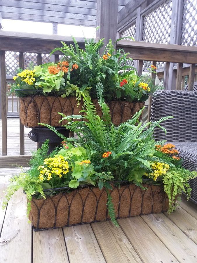 Lakeview Chicago planters