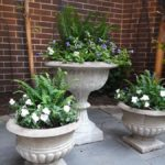 Gold Coast Chicago planters
