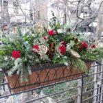 Festive Old Town Windowbox